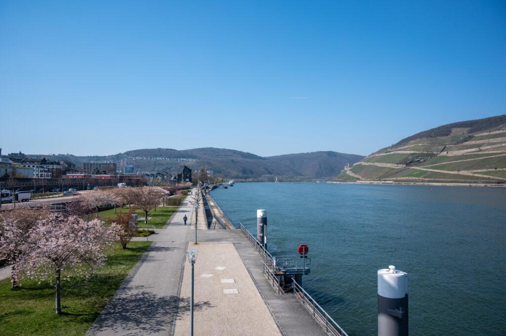 Die Uferpromenade lässt Besucher den Panoramablick der romantischen Landschaft vom Binger Loch mit Mäuseturm, Ruine Ehrenfels und Rheingebirge bis zum Rheingau und Taunusgebirge erleben. (Foto: Andrea und Jonas Schwappach)